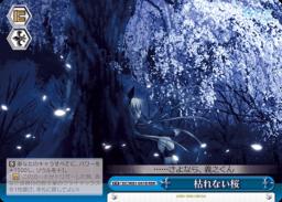 枯れない桜 さくら・クライマックス青;トリプルレアRRRパラレル(WS「サーカス 20th Anniversary」収録)