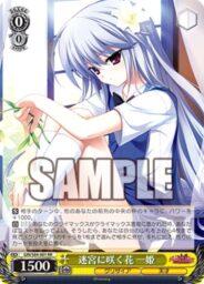 迷宮に咲く花 一姫(WS「BP グリザイアの果実 Vol.2」収録)